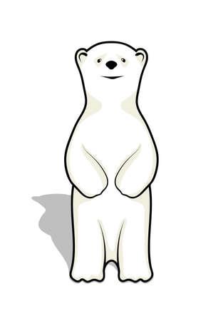 bear cub: illustration of a bear cub of a polar bear