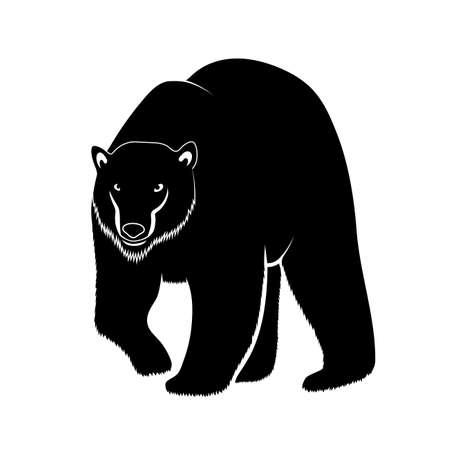 bruin: polar bear on a white background Illustration