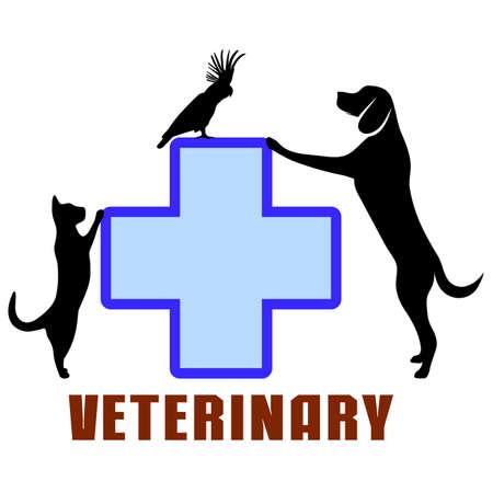 veterinary medicine: symbol of veterinary medicine