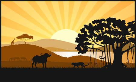 African savanna an evening landscape Çizim