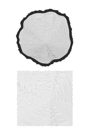 rings on a tree cut: rings of texture of wood. tree cut Illustration