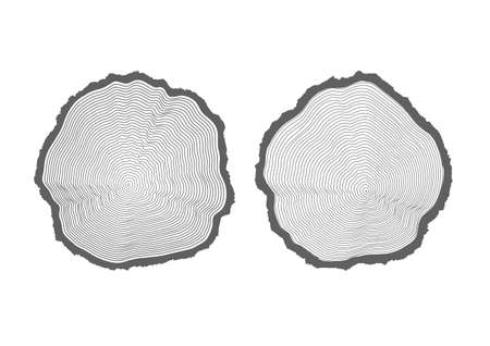 tree texture: rings of texture of wood. tree cut Illustration