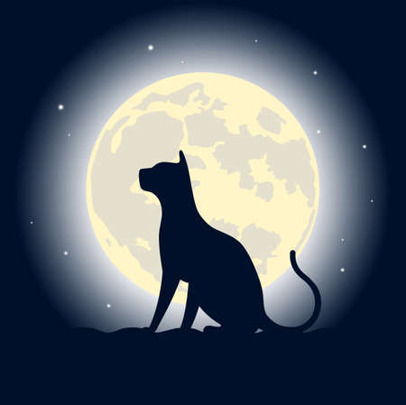 cat on a roof against the moon
