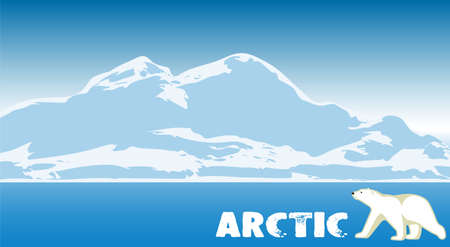 polar climate: Arctic landscape. natural background.