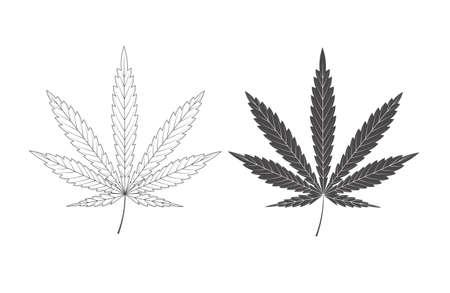 marihuana leaf: sheet of hemp is isolated on a white background