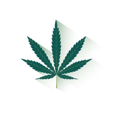 marihuana: sheet of hemp on a white background