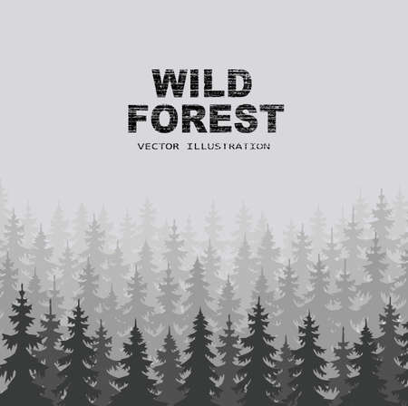 fog forest: wild forests natural background