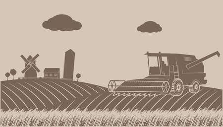 cosechadora: la limpieza de cultivo de cereales paisaje rural