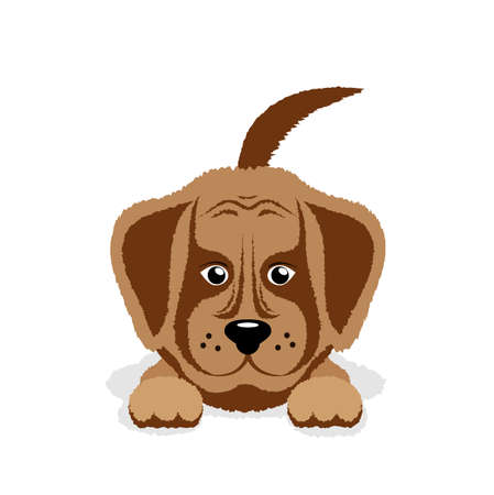 wagging: dog puppy on a white background