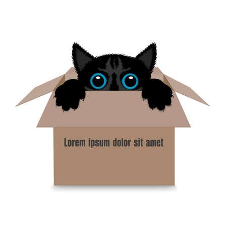 boite carton: chaton dans une boîte Illustration
