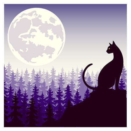 mystical silhouette of a cat against the background of the moon