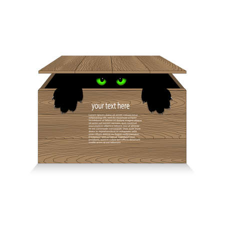 cat open: angry cat in a wooden box Illustration