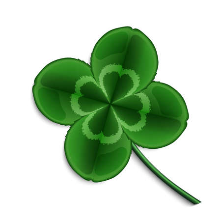 fortunate: leaf clover isolated on white background Illustration