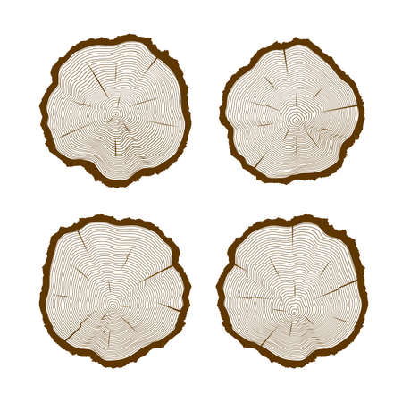 tree texture: Texture tree cut set.