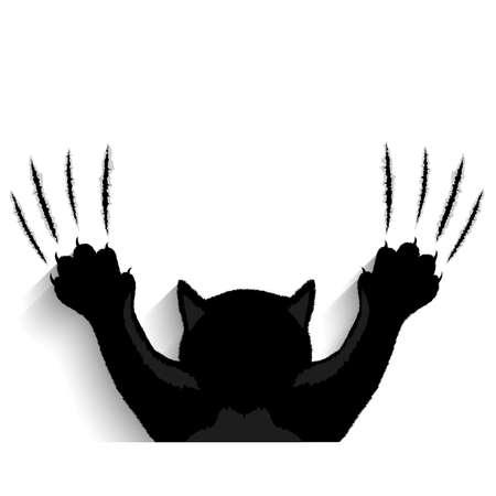 Black cat tearing back drop