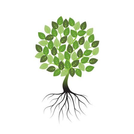 Árbol verde con raíces un icono sobre un fondo blanco. Ilustración de vector