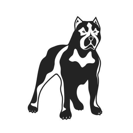 Fighting breed dog illustration.