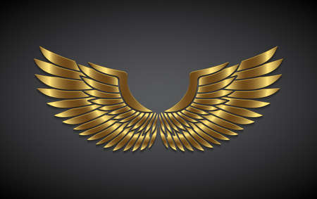 Wings from gold on a gray background. Reklamní fotografie - 92981442