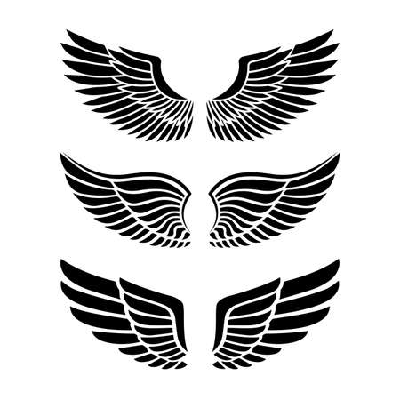 Wings for heraldry, tattoos, logos. Illustration