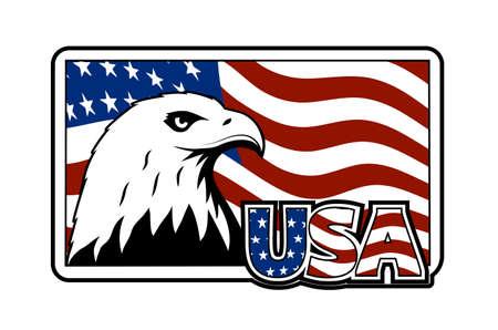 Bald eagle symbol of north america.