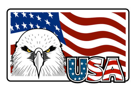 Bald eagle symbol of north america.