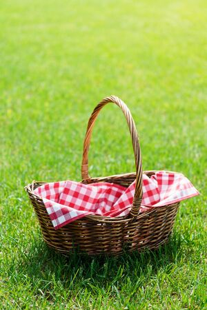 Empty picnic basket with red checkered napkin on the grass. Warm natural sunlight. Space for text.
