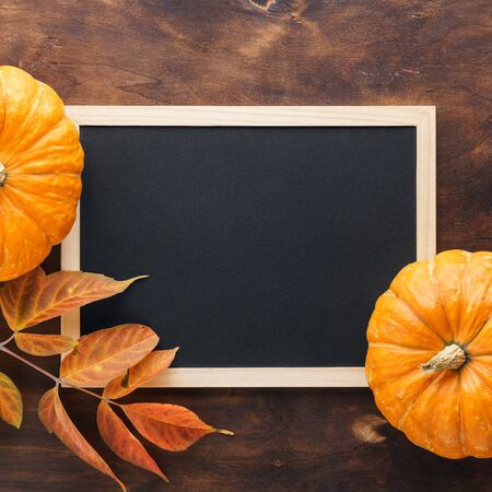 Fall chalkboard background with pumpkins, red and yellow leaves. Harvesting and autumn holidays celebration concept.