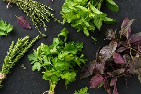 Bunches of various fresh herbs on black background. Rosemary, parsley, thyme, mint and basil.