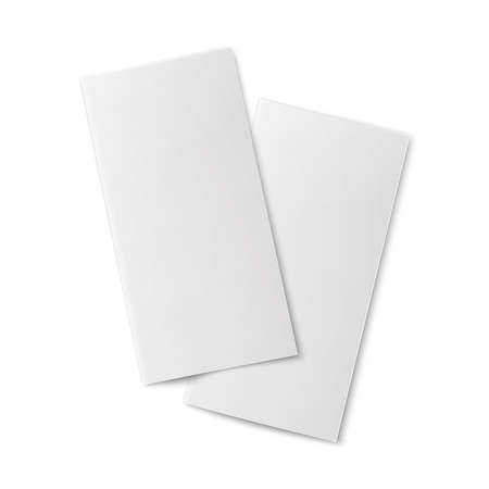 placecard: Pair of  blank bifold paper brochures  Illustration