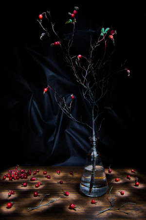 The branch of wild rose in a vase and scattered the berries of rose hips.Still-life.Dark lighting.