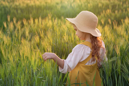 child is a farmers daughter, a blonde curly-haired girl in a straw hat in a wheat field at sunset. Beautiful, romantic scene. The concept of organic farming