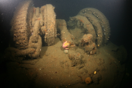 ship wreck: Baltic Sea underwater diving Ship Wreck photo