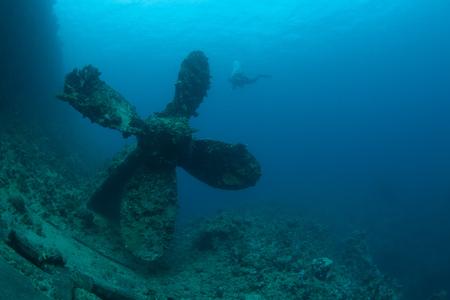 sunken: sunken ship wreck underwater diving Sudan Red Sea