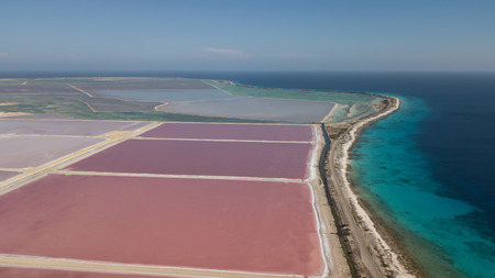 rose caribbean salt lake Bonaire island aerial drone top view