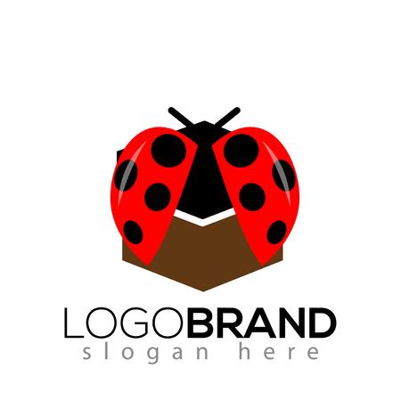 Ladybug box logo icon vector