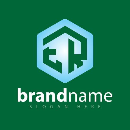 ER Initial letter hexagonal logo vector