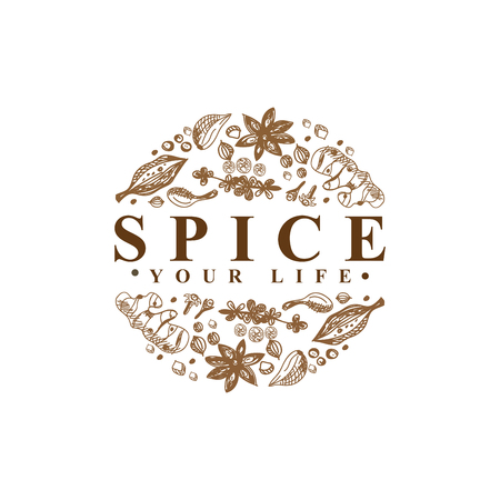 Modèle vectoriel Spice Logo Type Logo
