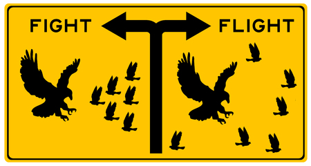 fight or flight illustration