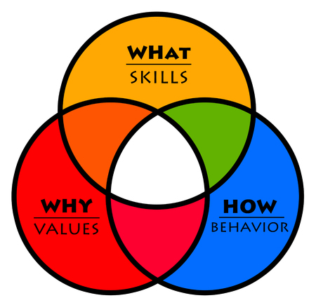 Values skills behavior illustration