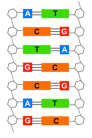 DNA illustration Stockfoto