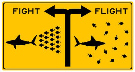 fight or flight shark illustration Reklamní fotografie
