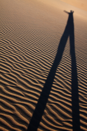 desert shadow Imagens