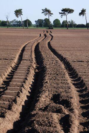 field tracks 版權商用圖片