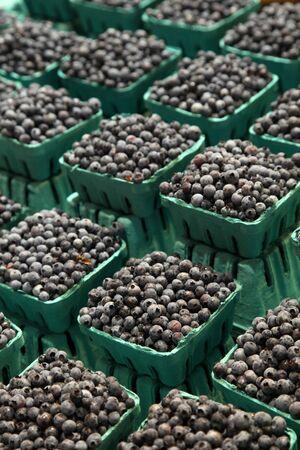 blueberries 版權商用圖片