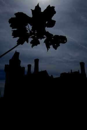 night castle 版權商用圖片