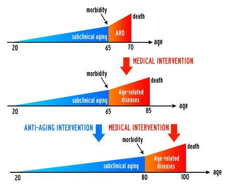 health lifespan aging illustration