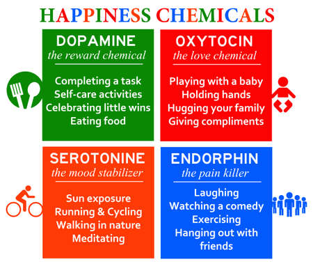 happiness chemicals illustration