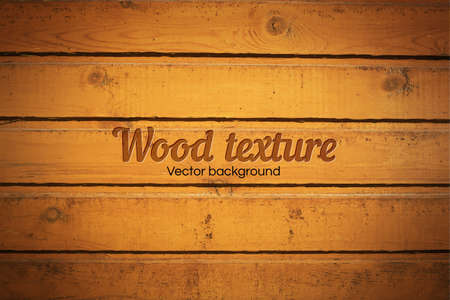 pale wood: Realistic texture of pale wood. Vector Illustration. Illustration