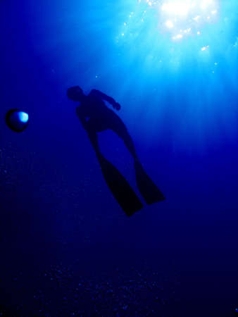 aquaria: A freediver as hes going up for air Stock Photo