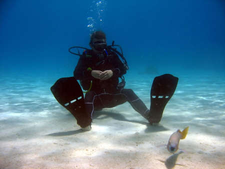 Diver sitting on sand looking at a fish. the sea here has a nice color and the diver is in nice contrast to the sea Stock Photo